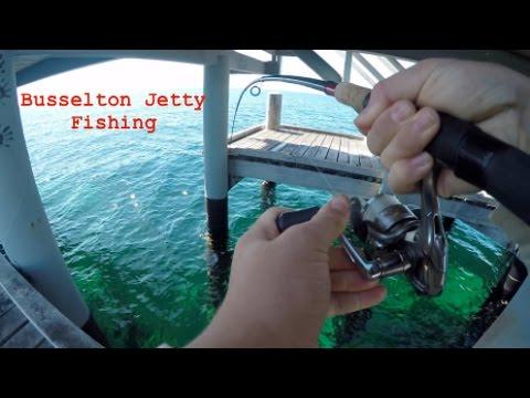 Catching Filefish Under Busselton Jetty | Fishing WA Part 2