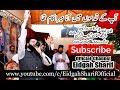 Naat Pak Shaykh Muhammad Hassan Haseeb ur Rehman sahib Barveen Pak 07 07 2017