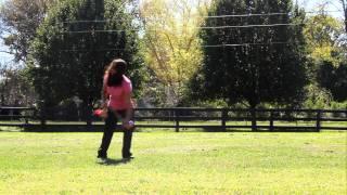 Nashville Dog Training - Tammi Mcleod - Professional Trainer