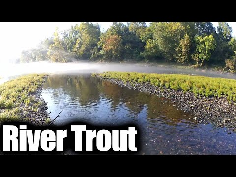 River Fishing For Trout Using Bottom Rigs (Rainbow And Brook Trout)