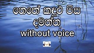 Nethe Kandulu Pisa damanna Karaoke (without voice) නෙතේ කඳුලු පිස දමන්න