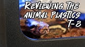 Where Should I Buy My Enclosure Comparing 4 Companies Youtube Experiments with animals have consistently shown that some phthalates can be endocrine disruptors but, as with bpa, the evidence. where should i buy my enclosure