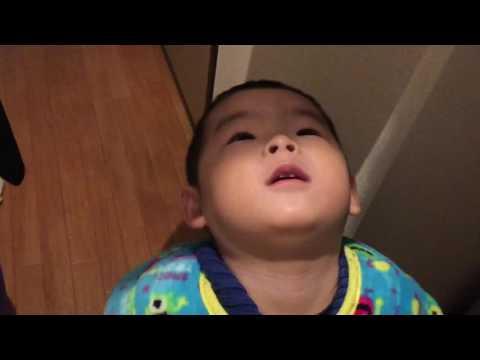 【日常】何気ない日常ω パパとプルバック車で遊ぶ・スチームのモクモクが気になる・iPhoneで自撮り・歯みがきとうがいをする1歳11ヶ月の赤ちゃん動画 ベビちゃんねる 赤ちゃん成長記録動画