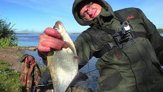 Два дня на ВОЛЖСКИХ берегах рыбалка на ФИДЕР
