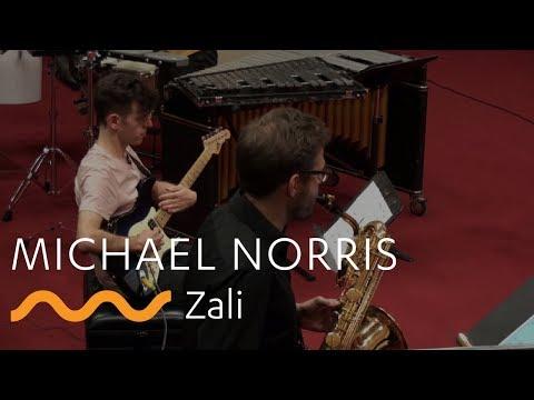 MICHAEL NORRIS: Zali