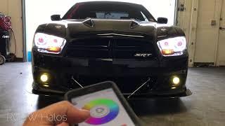 2011-2014 Dodge Charger SRT 8 Features: -Profile Performance 11-14 ...
