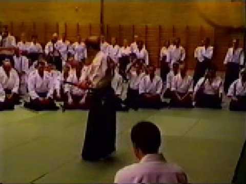 Shoji Nishio Aikido Toho Iai 08 Kawashitsuki Tsuki Sankyo