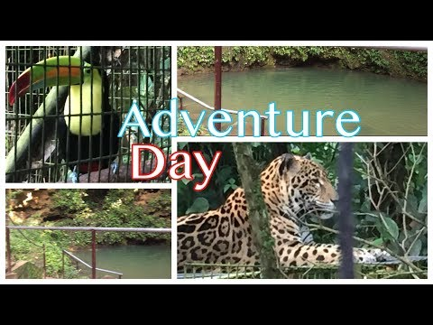 Our Adventure Day at the Belize Zoo and St. Herman's Blue Hole National Park :)