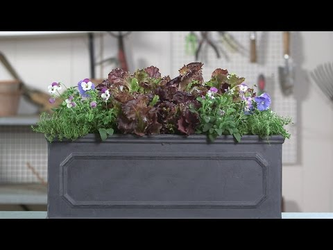How To Make A Vegetable Container | Southern Living