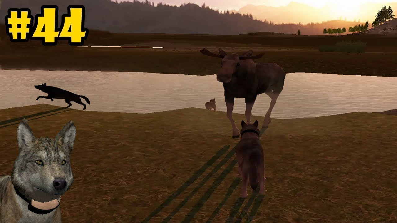 Wolf Quest Multiplayer - 4 Cows Moose - Android/iOS/Kindle ... - photo#18