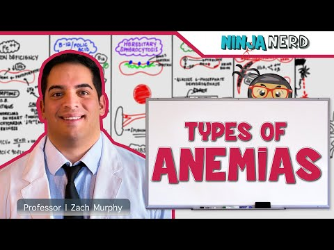 Hematology | Types of Anemia