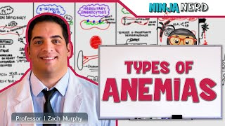 Hematology | Types of Anemias