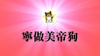 """北京""""限狗令""""是怎么回事?中国人和狗都生活在一个巨大陷阱中"""