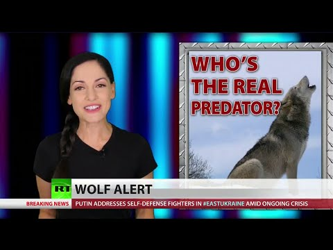 US unleashes predator among its citizens, August 29, 2014 - RT America  - mOtLWsBU784 -