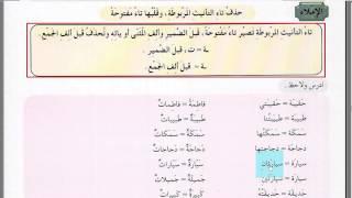 ЭКЗАМЕН. 52 УРОК. 2 ТОМ. Арабский в твоих руках.