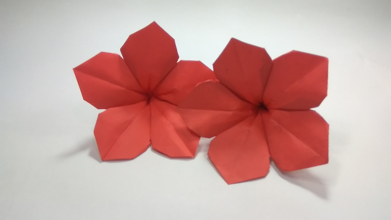 How to make an origami petunia flower tutorial ujang karnadi how to make an origami petunia flower tutorial ujang karnadi youtube ccuart Choice Image