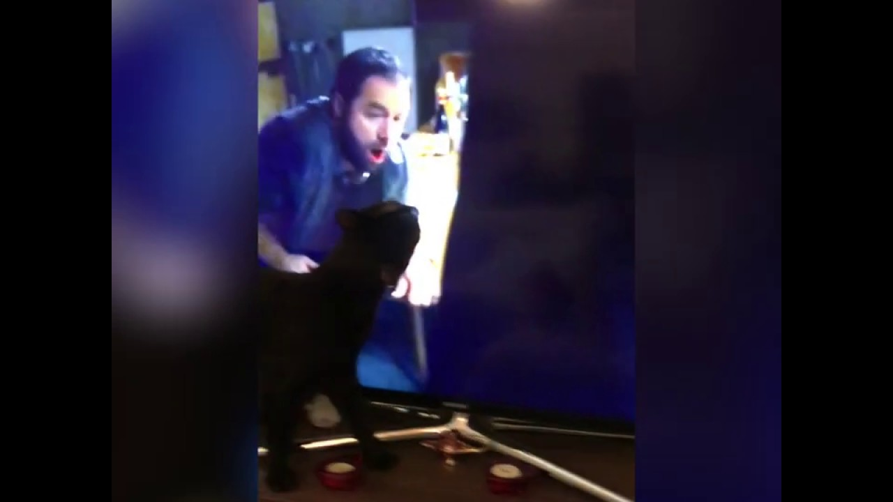 Panthiras Licking TV Because his Uncle Nikolaos Brahimllari is in Pain