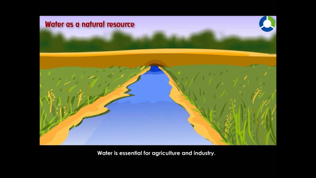 Natural Resources Explained - Natural Resources (EVS - CBSE Grade 4) -  YouTube [ 720 x 1280 Pixel ]
