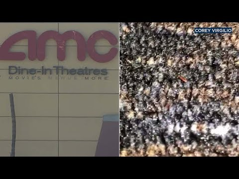 Wake Up Call - Facebook Video Shows Ontario Movie Theatre Literally Crawling With Bugs...