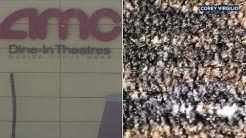 VIDEO: Tiny bugs crawl all over carpet at California AMC Theatre | ABC7