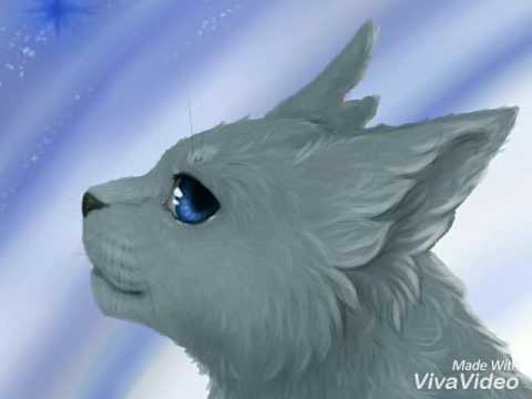 Коты Воители. Смерти. (Всех имен котов и причины их смерти есть в ОПИСАНИИ)