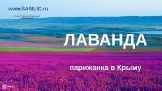 Эфирное масло лаванды - применение эфирного масла лаванды(, 2014-07-27T19:49:52.000Z)