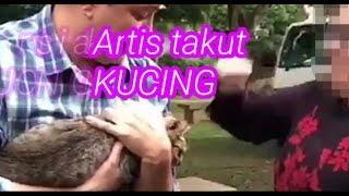 artis penakut kucing!!!