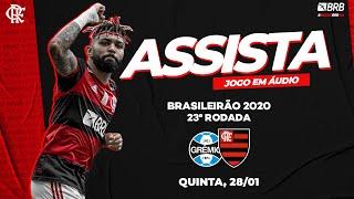 Grêmio x Flamengo AO VIVO na Fla TV   Brasileirão 2020