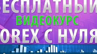 Форекс Видео Смотреть | Видеокурс по форекс скачать бесплатно