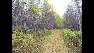 Mn North Shore Land For Sale At Absolute Auction