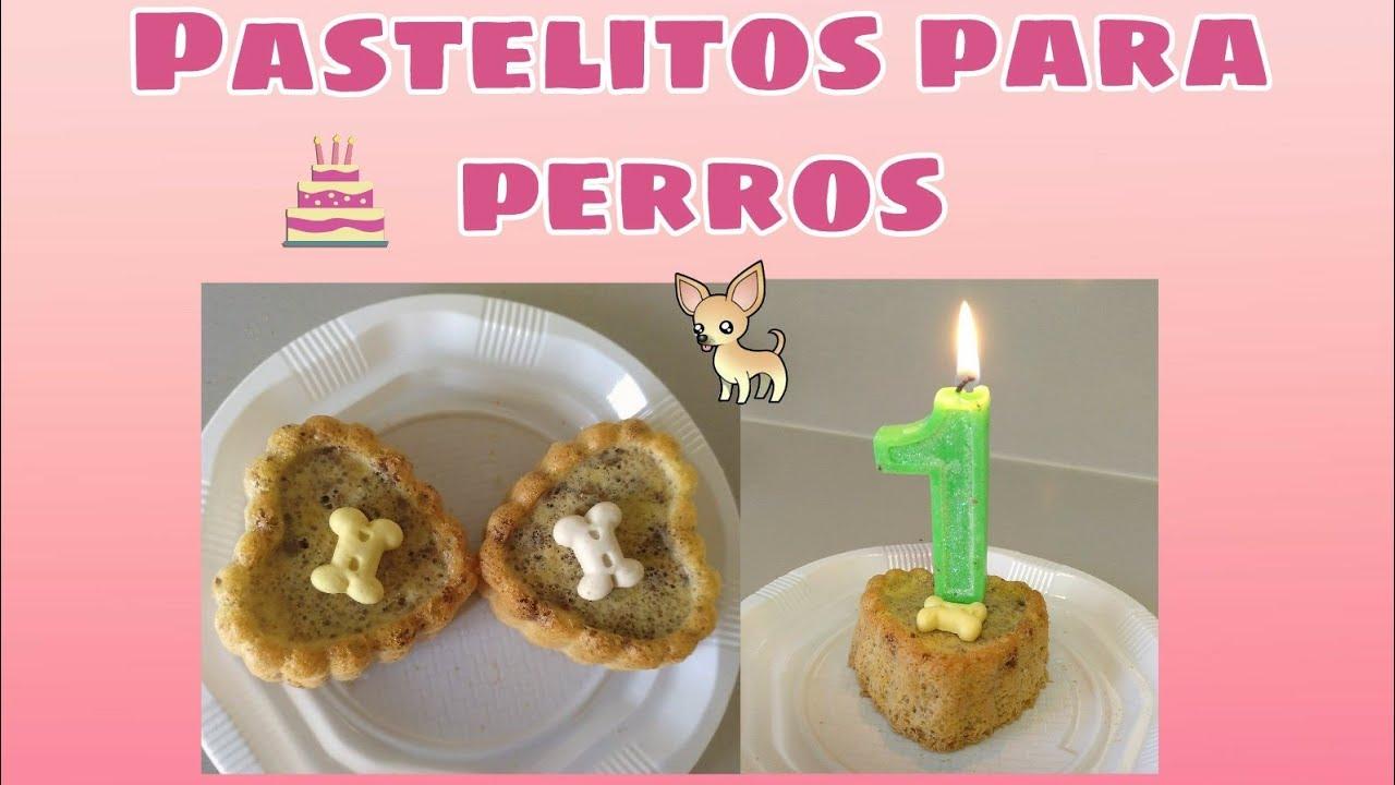 Pastel Para Perros Receta Fácil Y Rápida