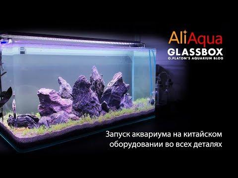Видео: AliAqua - 4: Запуск аквариума на китайском оборудовании во всех деталях