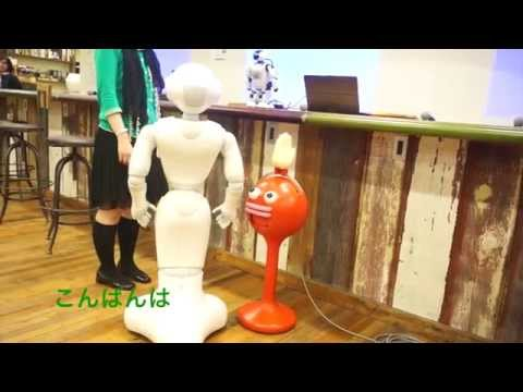 【抱腹絶倒】ロボット2体と人間との奇妙で愉快な会話 ペッパーとパルミー talking robots pepper and palmi