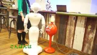 【抱腹絶倒】ロボット2体と人間との奇妙で愉快な会話 ペッパーとパルミー talking robots pepper and palmi thumbnail