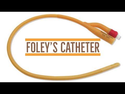 Foleys Catheter Parts Sweta Yadav