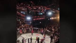 Ronda Rousey vs Amanda Nunes: view from seats