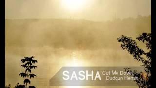 Sasha - Cut Me Down (Dudgun remix)