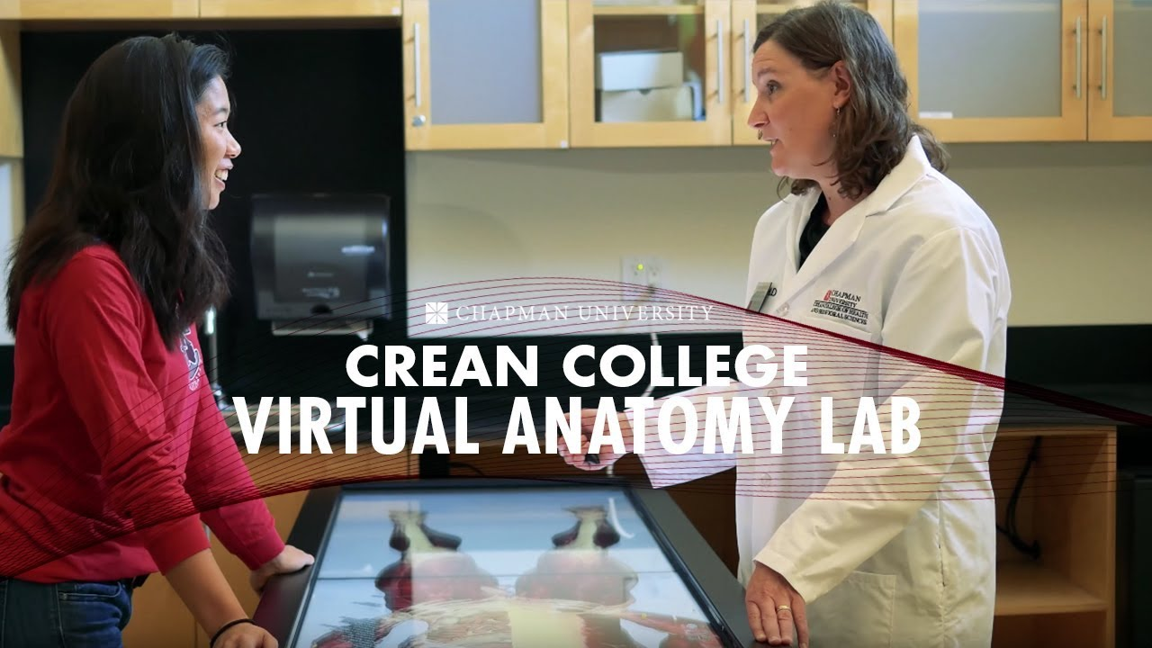 The Virtual Anatomy Lab - YouTube