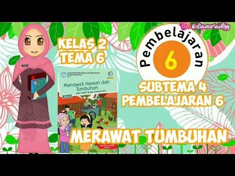 KELAS 2 TEMA 6 SUBTEMA 4 PEMBELAJARAN 6 || MERAWAT TUMBUHAN || VIDEO PEMBELAJARAN TEMATIK