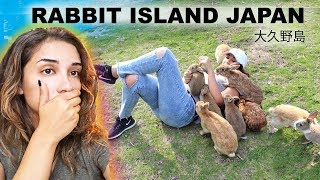 The Dark, Twisted Truth About Rabbit Island Japan