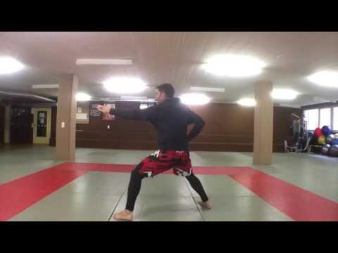 Entraînement pour 4ème Dan karate