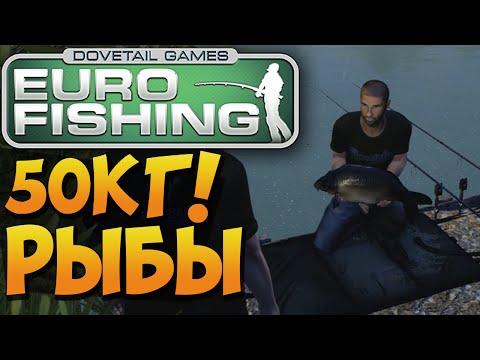 Euro Fishing - 50кг РЫБЫ РЕАЛЬНО? Как не надо ловить рыбу!