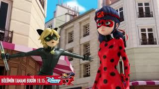 Animaystro - Önizleme | Mucize: Uğur Böceği ile Kara Kedi | Disney Channel TR