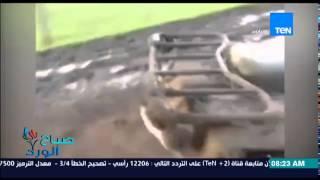 فيديو..حيوان الكوالا يطارد فتاة ويتعلق بدرجاتها النارية