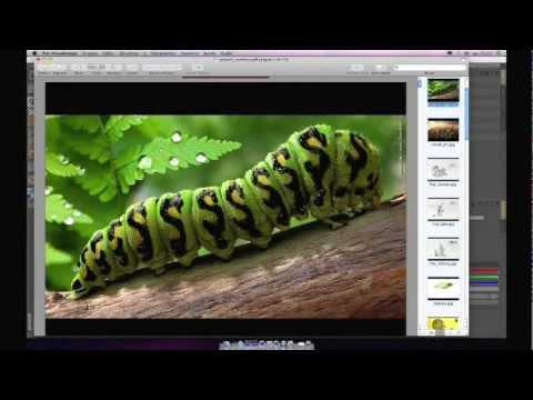 Cinema 4D - Ilustrações 3D Publicitarias