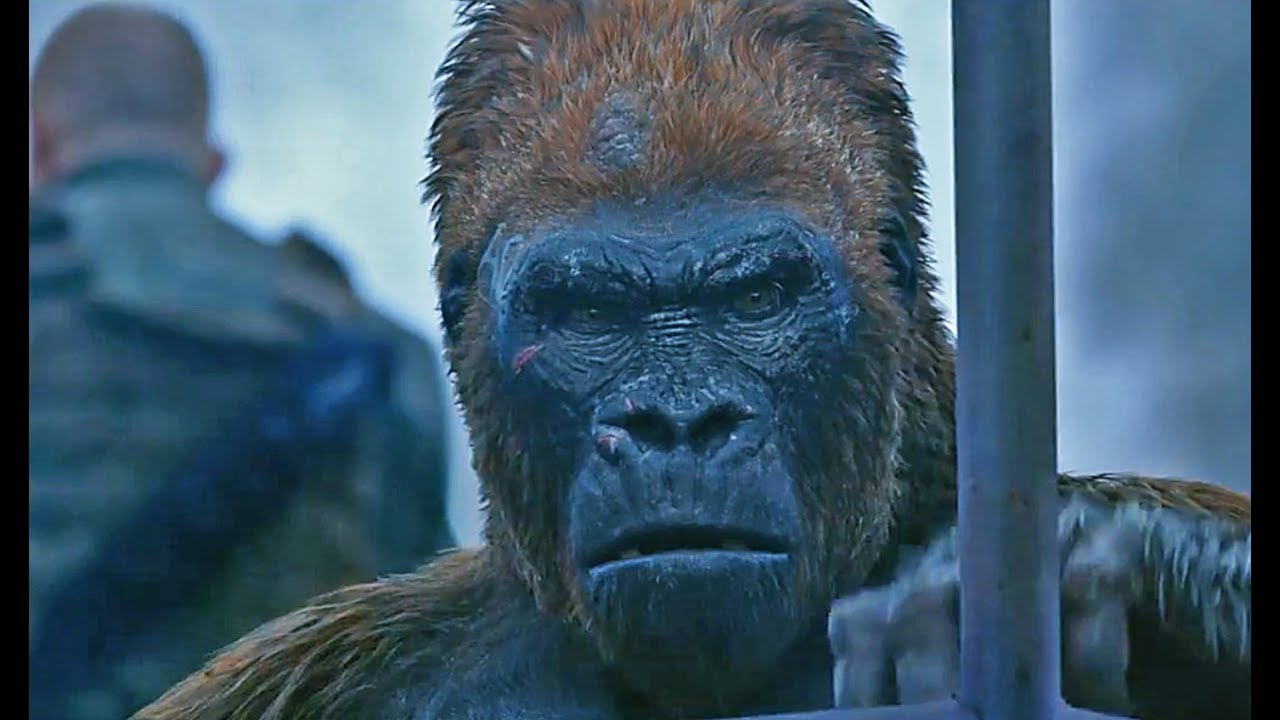 Download War for the Planet of the Apes | official trailer #4 (2017)