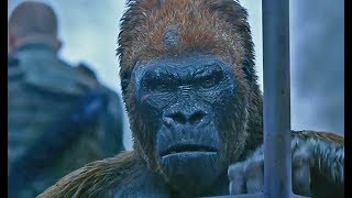 War for the Planet of the Apes | official trailer #4 (2017)
