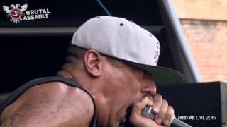 Brutal Assault 20 - Hed PE (live) 2015