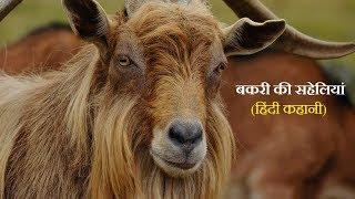 एक बकरी की सहेलियां,  Kids story in hindi  Moral story , Hindi Kahani