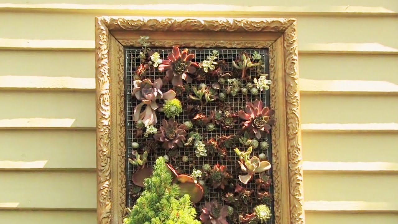 Creating Living Wall Art   YouTube